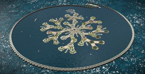 the-seasteading