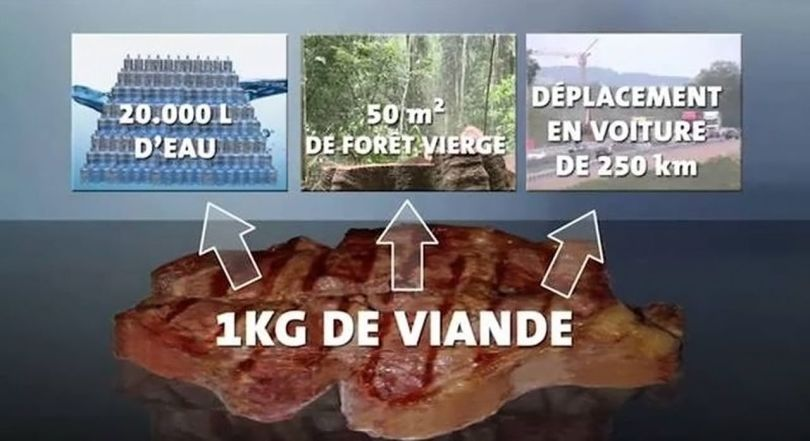 1 Kg de viande