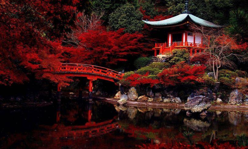 Japanese Garden - Jardin japonais - 2