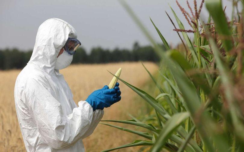 OGM - 2