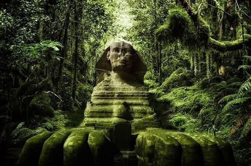 Sphinx - Sahara vert