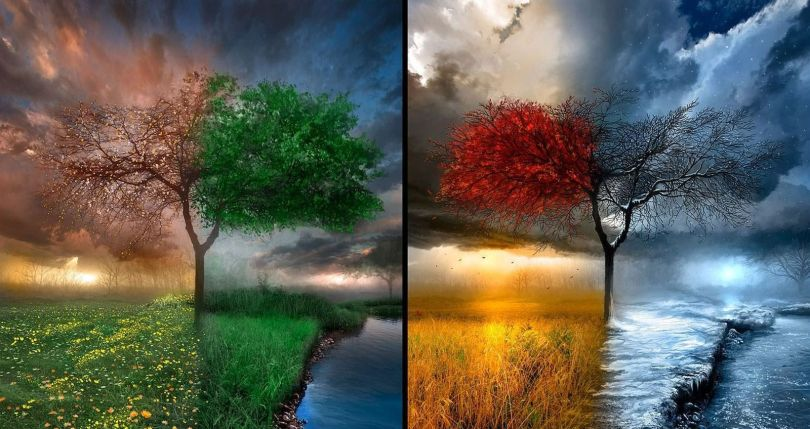4 saisons - 2