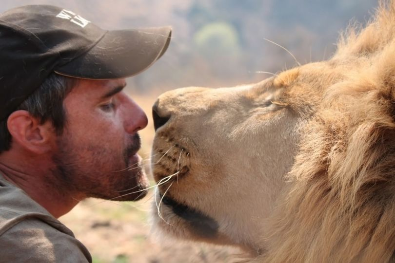 Kevin Richardson - Lion - 1