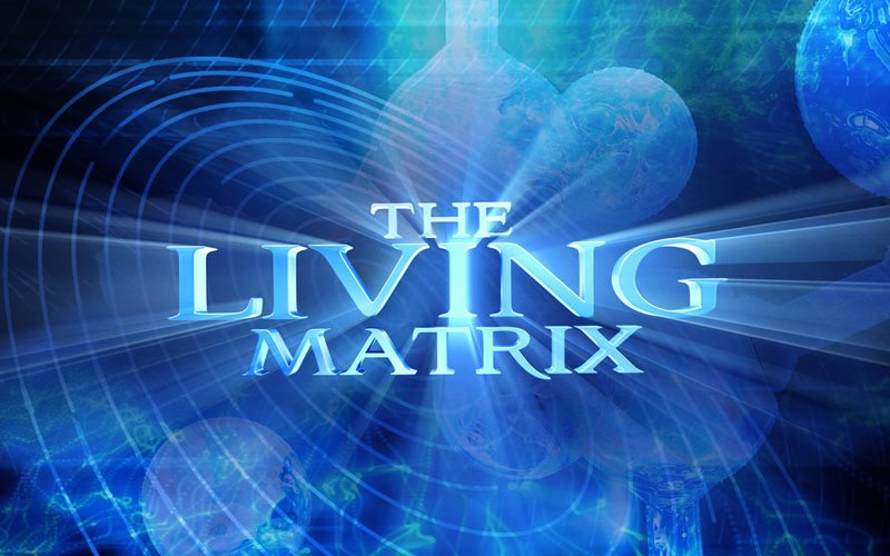The Living Matrix - 1