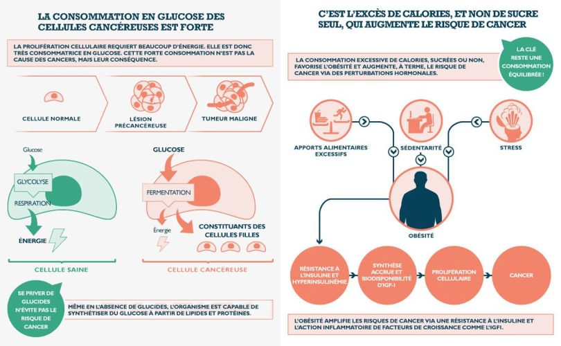 Glucose - Calories - Cancer - 1