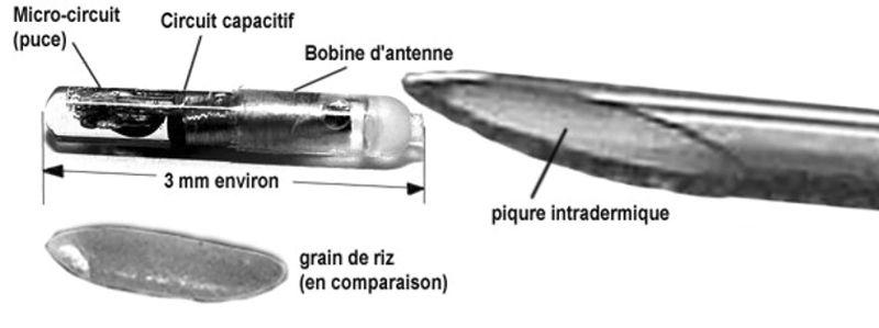 Puce RFID - 1