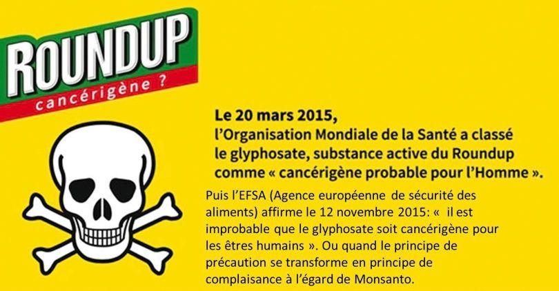 OMS - EFSA - Glyphosate