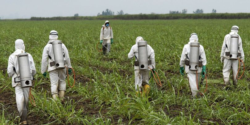 Roundup - Glyphosate - Herbicide