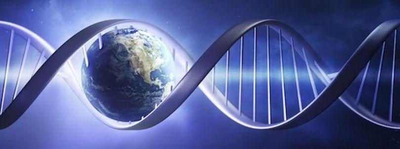 Tests ADN - 3