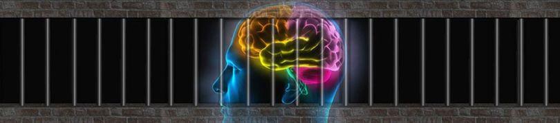 Cerveau - Prison