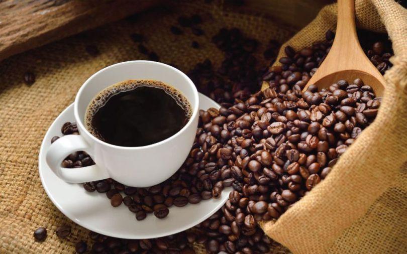 Kopi Luwak - Café - 7