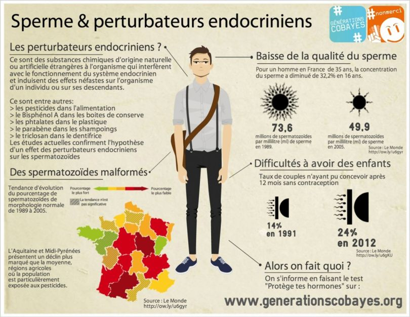 Perturbateurs endocriniens - 4