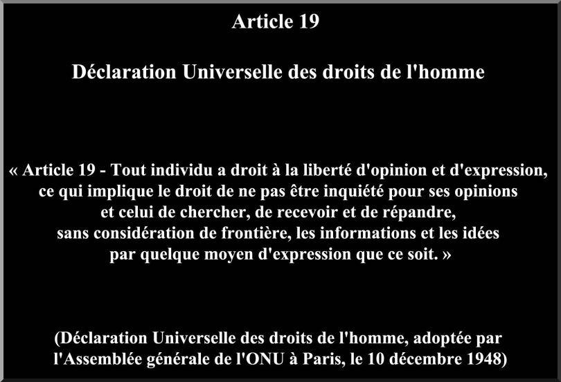 Article 19 - Liberté d'expression et d'opinion
