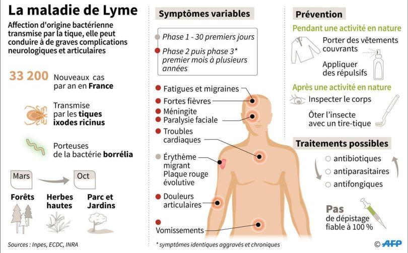 Maladie de Lyme - Conseils