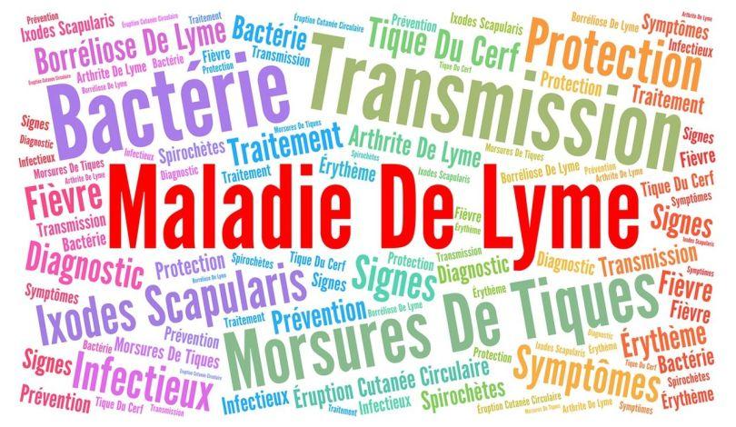 Maladie de Lyme - Symptômes