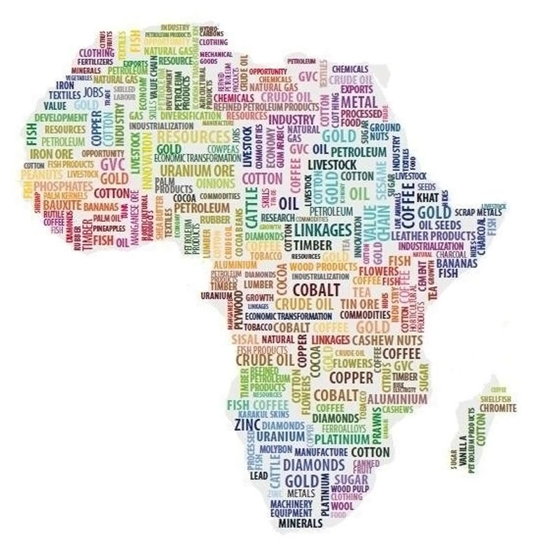 Afrique - Pillage - Ressource naturelle