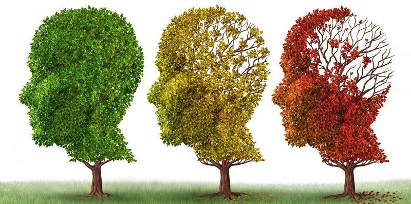 Alzheimer - Arbres