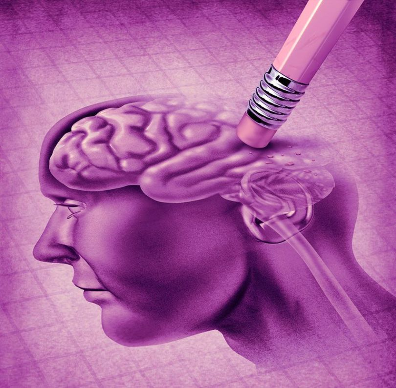 Cerveau - Gomme