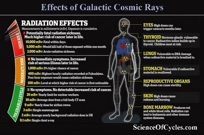 Effects of cosmic ray radiation