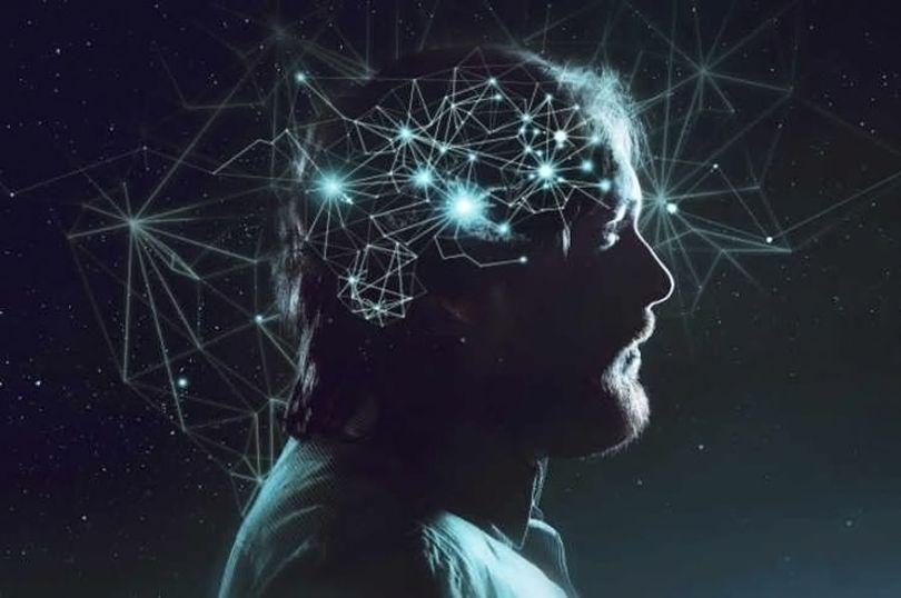 Multivers - Cerveau - Brain
