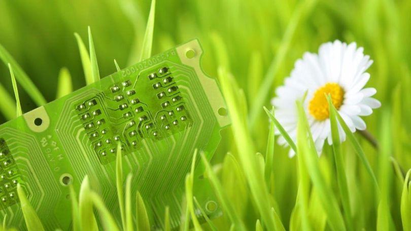 Plante - Circuit électronique