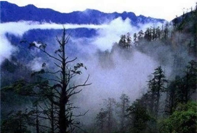 Brouillard - Vallée de Heizhu - Chine