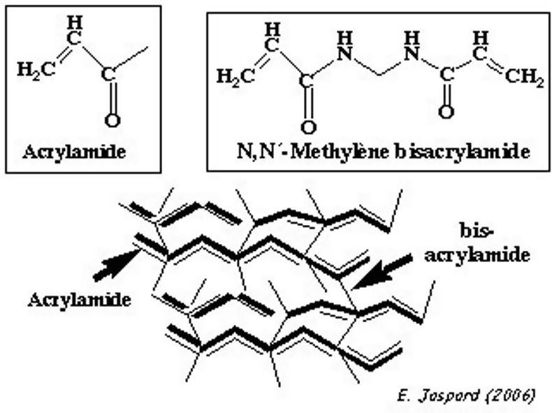 Café en capsules – Formule chimique