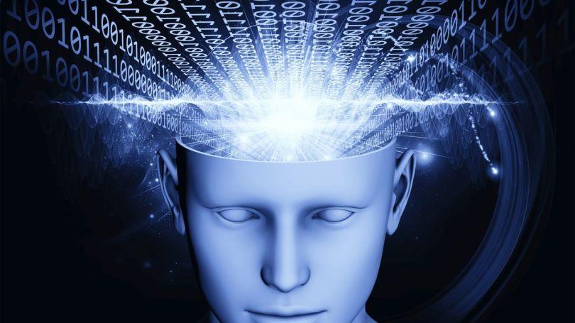 Cerveau - Suite binaire