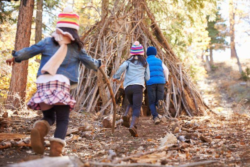 Enfants - Jeux - Forêt - Cabane