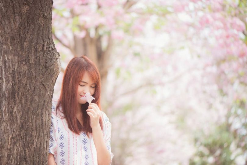 Japon-femme-cerisier