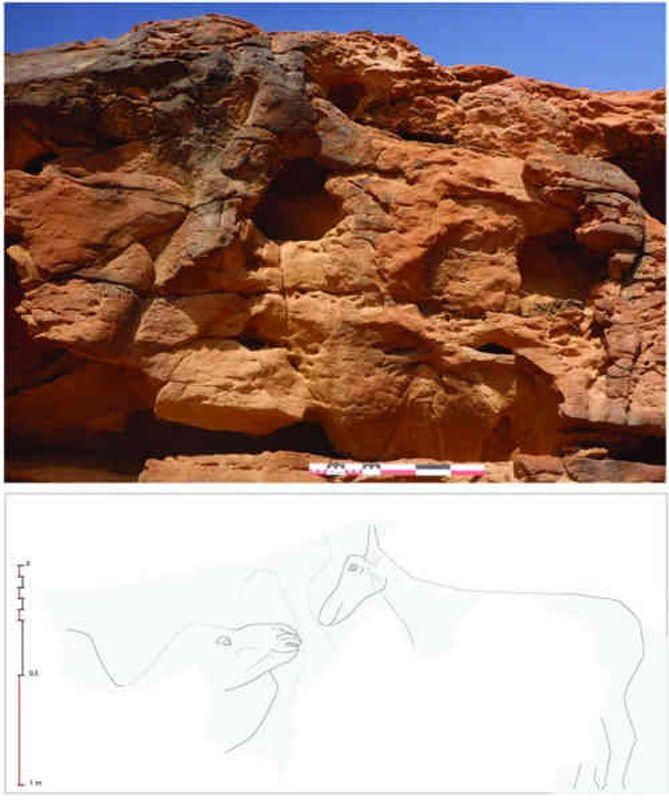 Sculptures d_animaux - Arabie saoudite - 5