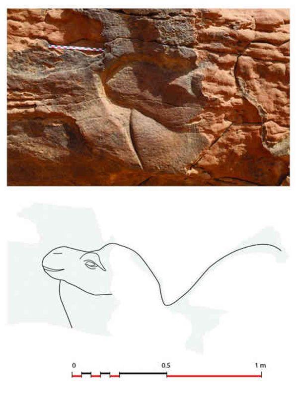 Sculptures d_animaux - Arabie saoudite - 6
