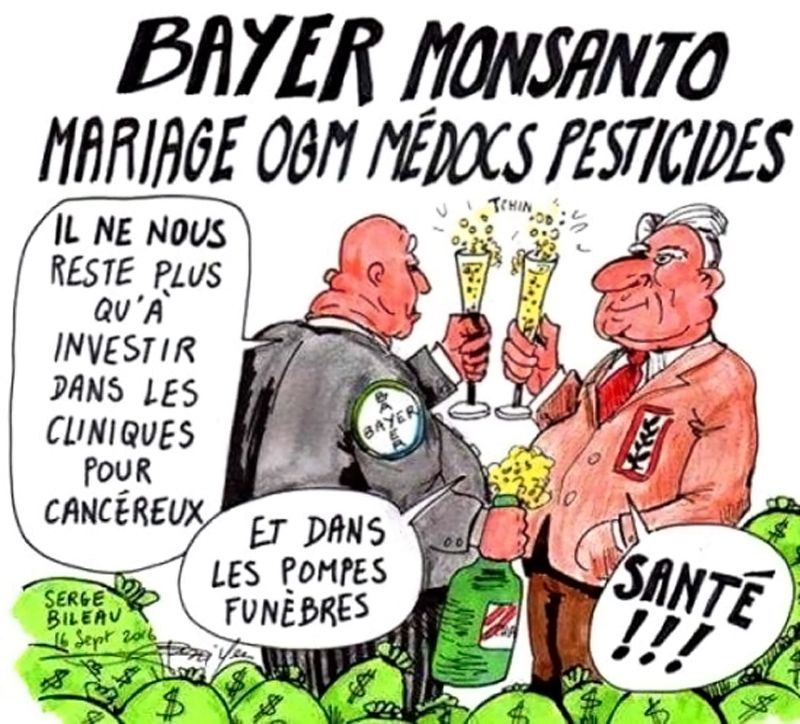 Bayer - Monsanto - OGM
