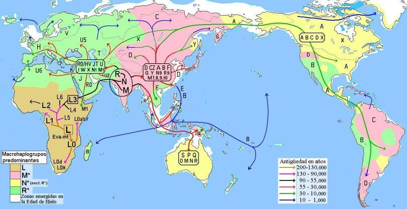 Migraciones_humanas_en_haplogrupos_mitocondriales