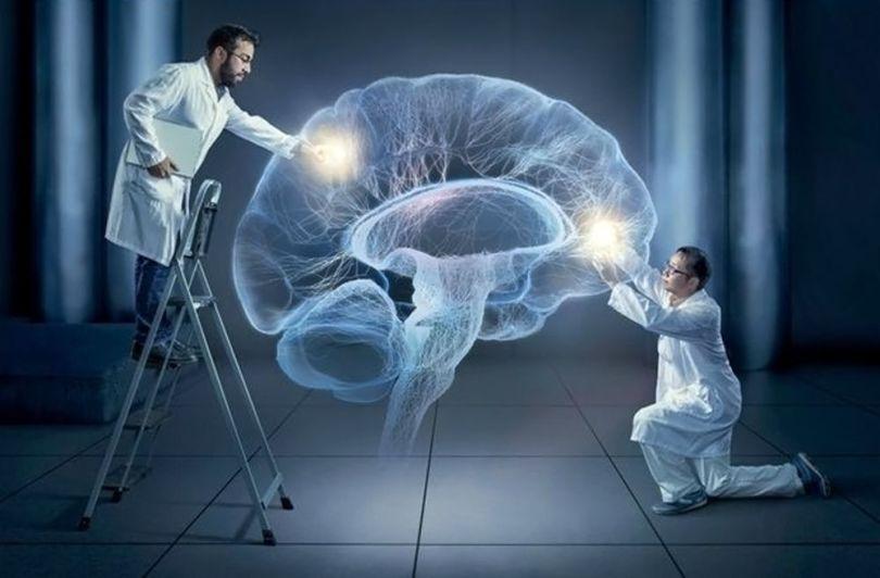 Cerveau - 2 hommes