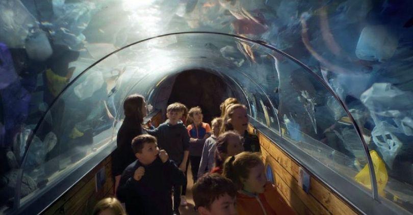 Greenpeace – Aquarium – Irlande - 2