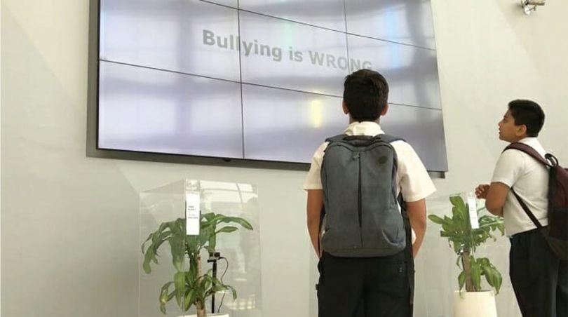 Bully a Plant - 10