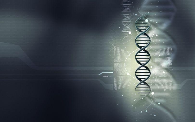 ADN -2