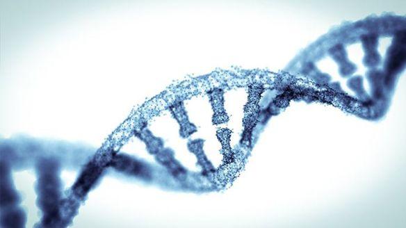 mauvais datation gène
