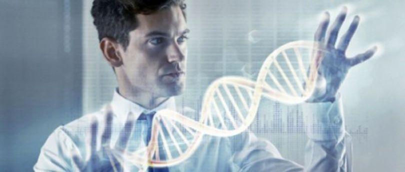 Homme - ADN