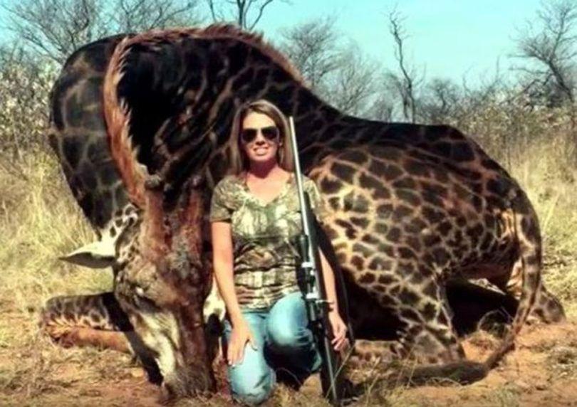 Safari – Girafe - 3