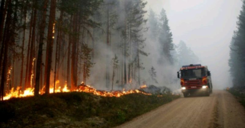 Suède – Feu de forêt