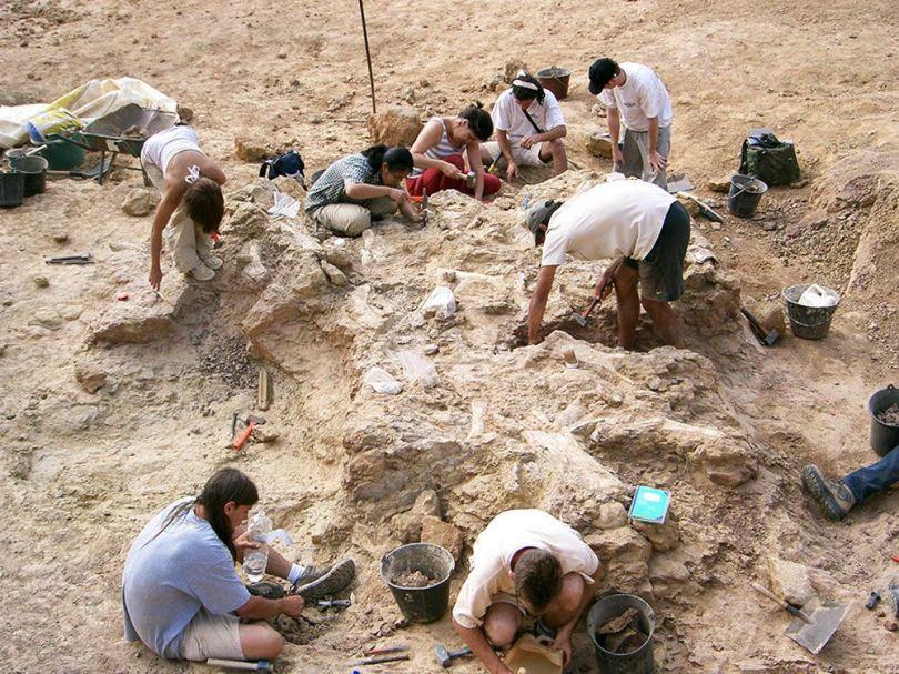 Fouilles - Paléontologues