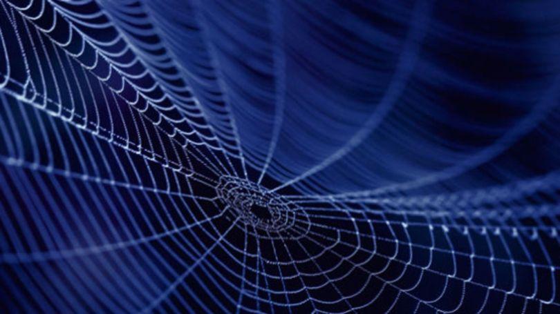 Toile d_araignée - 1