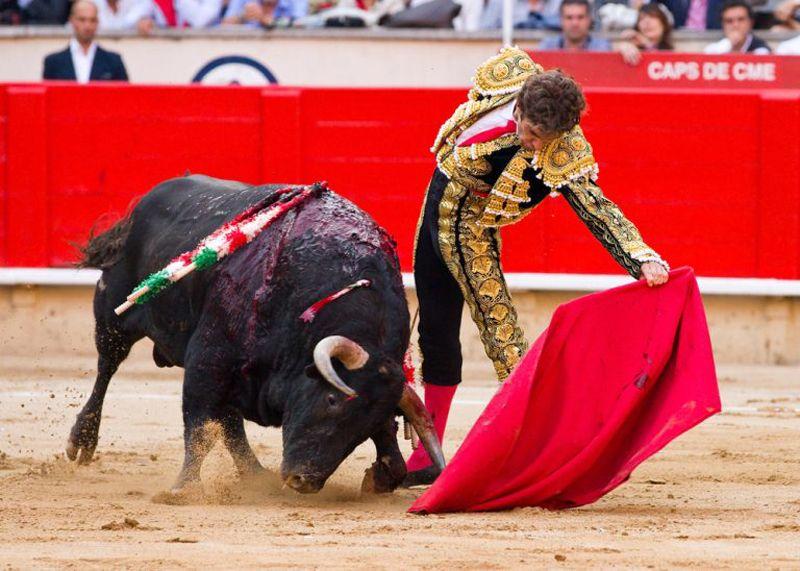 Alvaro Munera – Corrida - 4
