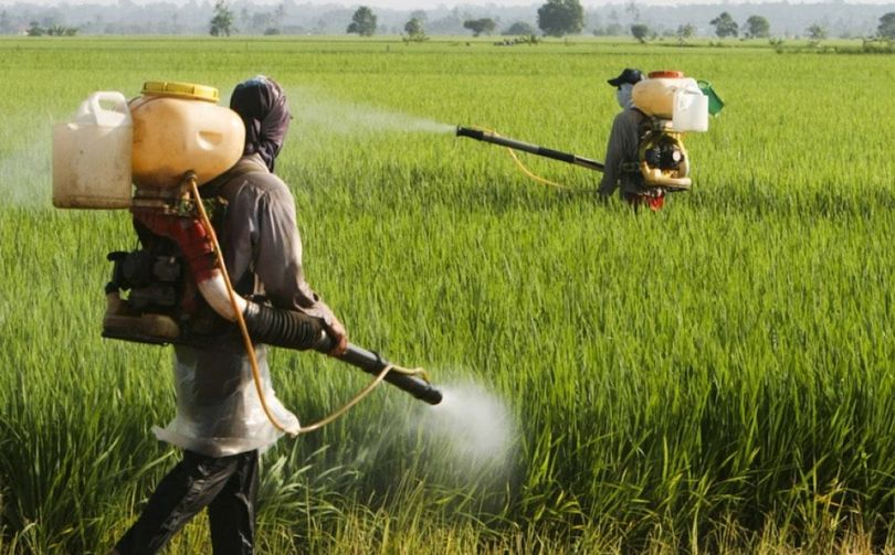 Agriculteurs - Herbicide