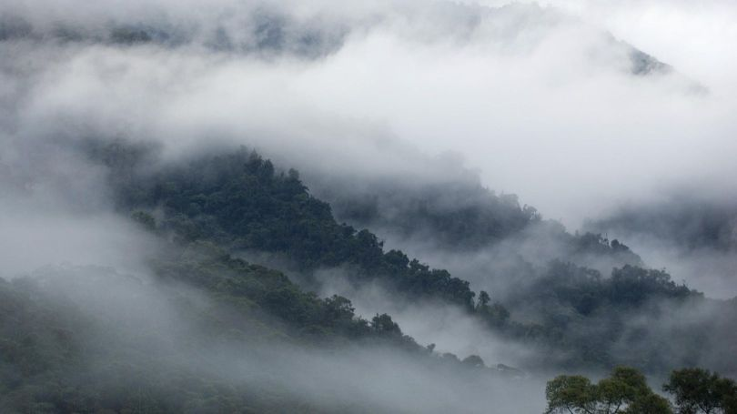 Brouillard - 1