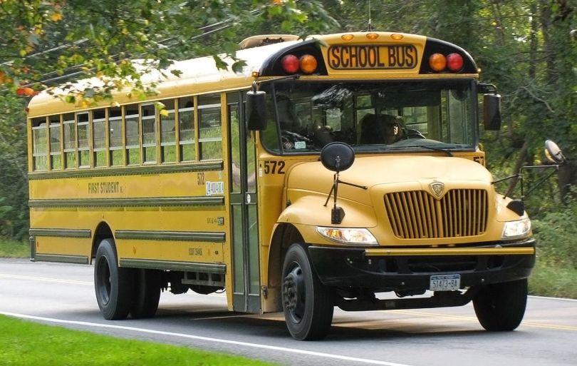 Bus scolaire - School bus