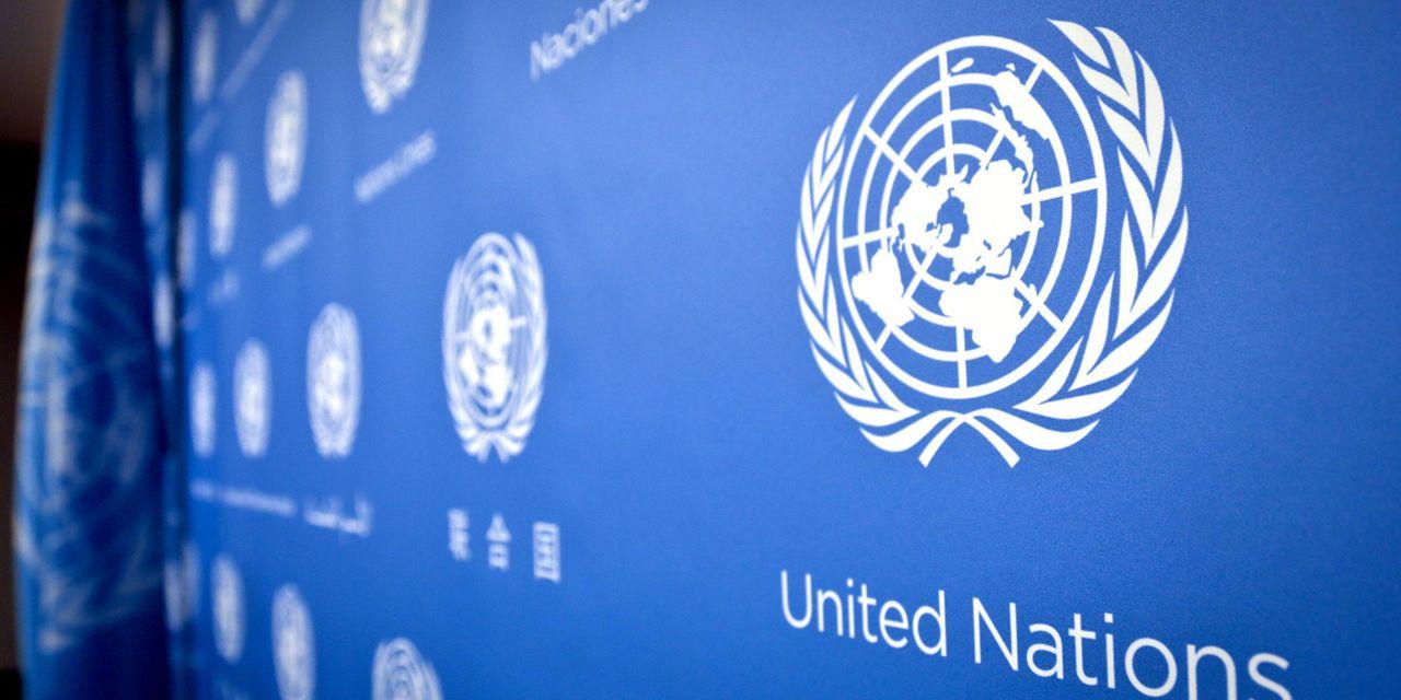 Nations unies : Un rapport révèle que l'ONU emploie 3 300 pédophiles, responsables de 60 000 viols au cours des 10 dernières années [Vidéos]