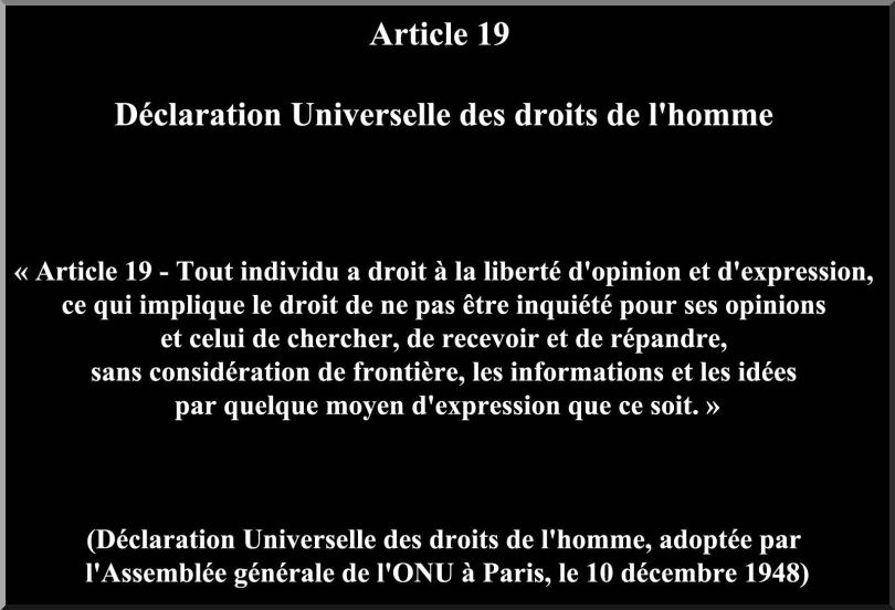 Article 19 - Liberté d'expression et d'opinion